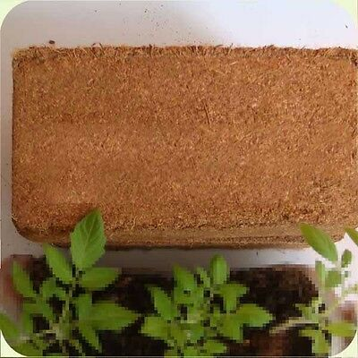 HYDROPONIC GROWING MEDIA COCONUT FIBER coco coir natural peat greenhouse 615 g