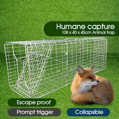 Extra Large Folding Humane Live Animal Trap Cage Fox Rat Cat Rabbit Catch