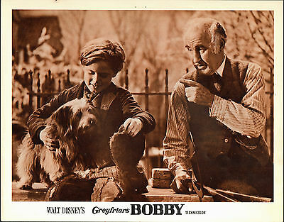 GREYFRIARS BOBBY original 1961 DISNEY lobby card SKYE TERRIER 11x14 movie poster