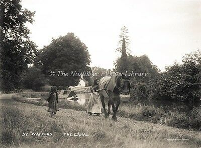 GN 156 PHOTO WATFORD CANAL HORSE DRAWN BARGE SCENE HERTFORDSHIRE c 1900