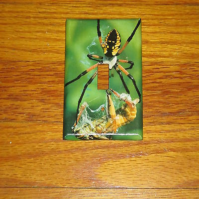 Classic Black And Yellow Garden Spider Light Switch Cover Plate