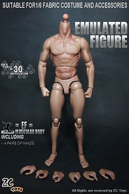 12-inch 1/6 Model Toy Muscle Muscular Male Doll Body Can Fit Hot Toys Head