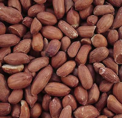 10Kg Maltby'S Wild Bird Peanuts Premium Quality Whole Safe Nuts No Splits
