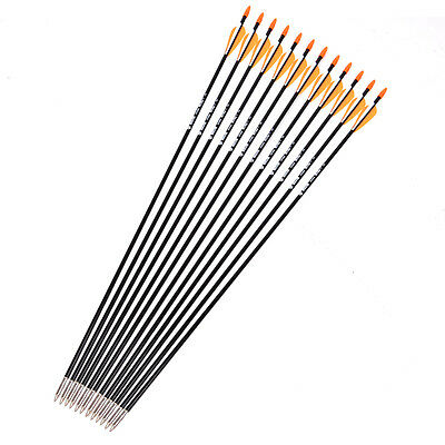 **12x 80CM Archery hunter Nocks Fletched Arrows Fiberglass Target Practice Arrow