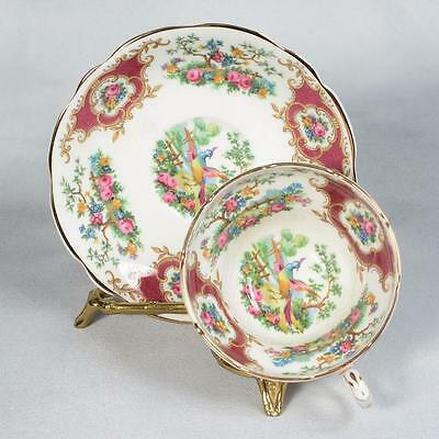 "Coalport ""broadway Marone"" Teacup & Saucer - Red/white Floral With Exotic Birds"