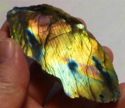 Bright Gold, Deep Orange, Blue LABRADORITE Polished Slab 482cts