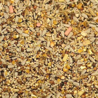 10Kg Maltby's Premium With Suet Pellets Wild Bird Mixture Seed Food