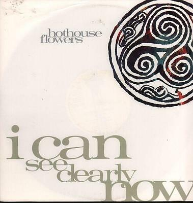 "Hothouse Flowers(12"" Vinyl P/S)I Can See Clearly Now-London Records-LON-VG/VG+"