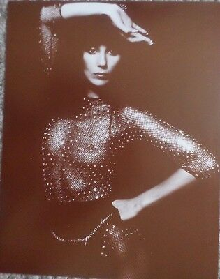Cher stricking a pose in costume Sepia Poster