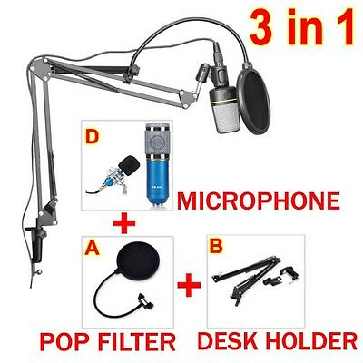Condenser Microphone Mic Pop Filter Mask Shield + Arm Desktop Boom Stand Holder