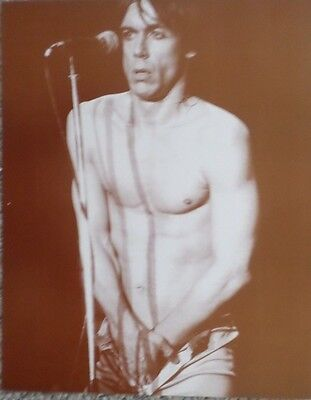Iggy Pop half naked on stage Sepia Poster