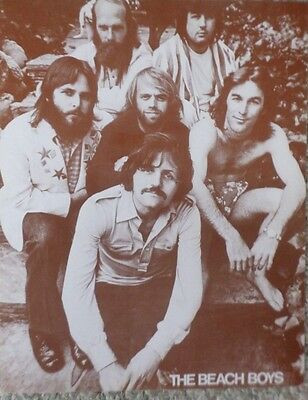 The Beach Boys in their later years Sepia Poster
