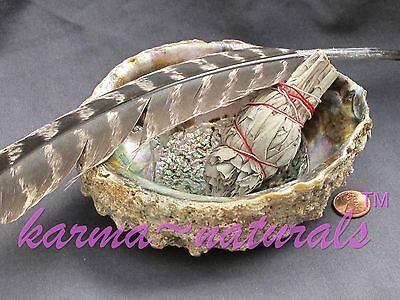 CLEANSING KIT - White Sage Smudge Stick, Abalone Shell & Turkey Feather