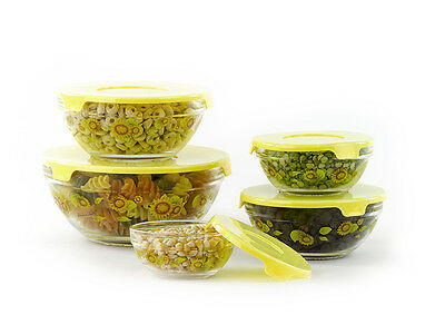 10 Pcs Glass Lunch Bowls Food Storage Containers Set With Lids & Sunflower