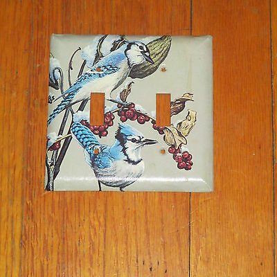 Classic Blue Jays Bird Birds 2 Hole Light Switch Cover Plate