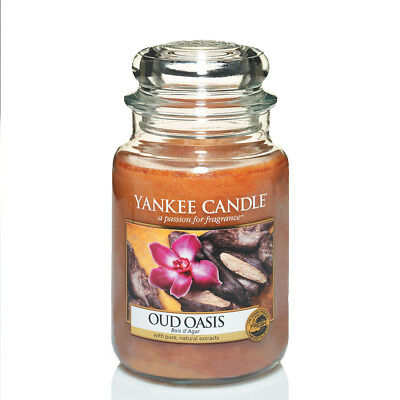 Yankee Candle Oud Oasis Grosses Glas 623 g