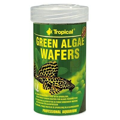 Tropical Green Algae Wafers - Grünalgen-Wafer für pflanzenfressende Saugmäuler