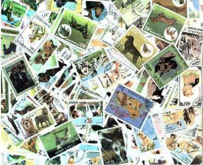 Dogs on Stamps Collection - 200 Different Stamps