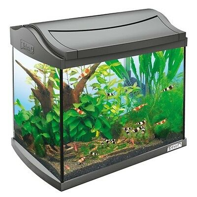 Tetra AquaArt Shrimps Aquarium-Komplett-Set 20 Liter
