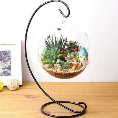 Hanging Clear Round Ball Glass Flower Vase Planter Terrarium Container Decor UK