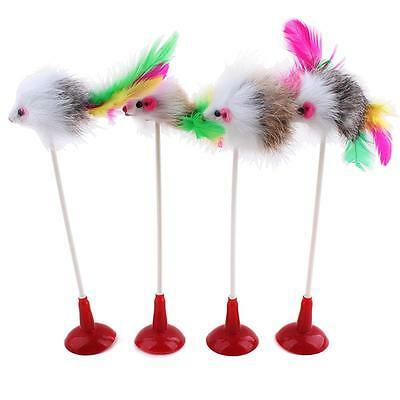 1Pc Funny Pet Feather False Mouse Bottom Sucker Cat Kitten Playing Scratch Toy