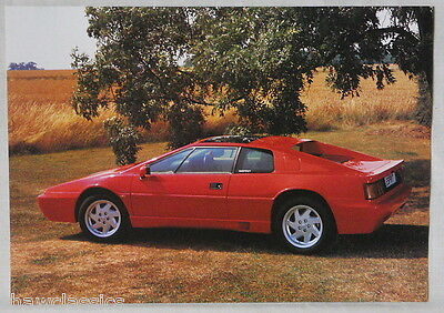 LOTUS ESPRIT - Single page, double sided brochure & specification from 1991