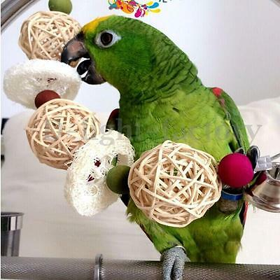 Swing Bird  Parrot Rope Climb Harness Cage Chew Toys Parakeet Cockatiel Budgie