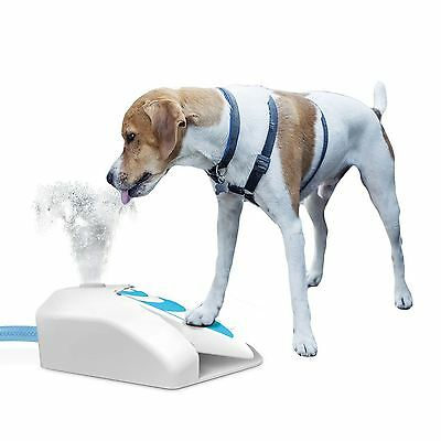 Outdoor Garden Water Drinking Fountain Dog Cooler Press Step Paw Operated AFP