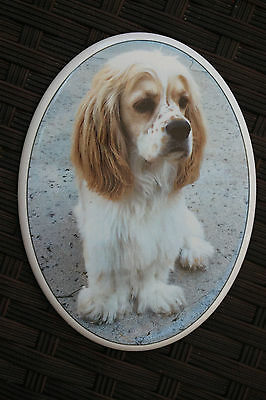 """""""YOUR PETS"""" Memorial Cremation Headstone Funeral PHOTO Plaque OUTSIDE NO FADING"""