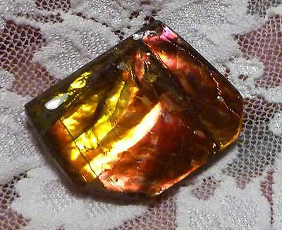 29 carats! Red to Green Change AMMOLITE Finished Gemstone 29x23mm