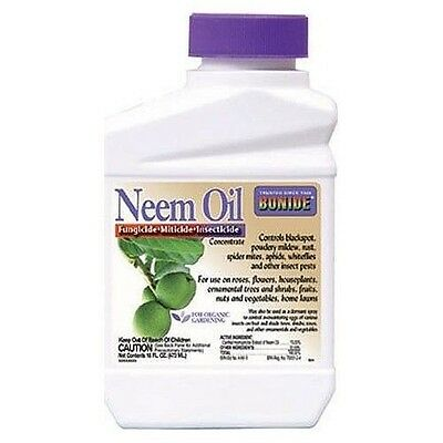 New Bonide 024 Pint Concentrated Neem Oil Garden Plant Insect Fungicide 0052977