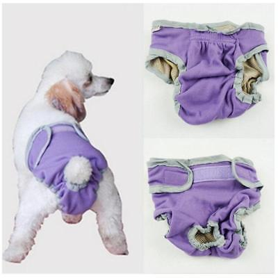 Female Pet Dog Puppy Physiological Sanitary Pant Diaper Underwear Purple S