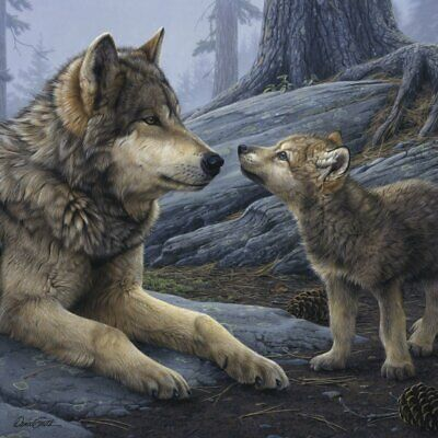 WOLF ART PRINT Brother Wolf (detail) - Daniel Smith 11x14 Wolves Wildlife Poster