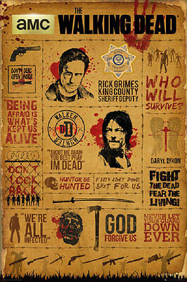 24x36 WALKING DEAD INFOGRAPHIC POSTER rolled and shrink wrapped