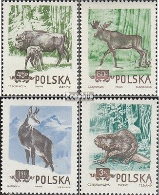 Poland 885A-888A unmounted mint / never hinged 1954 Forest- and Gebirgstiere pol