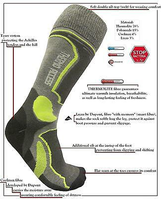 eXPANSIVE SKI RACING THERMOLITE PROLEN COOLMAX SOCKS Lime Grey [361/10/02/09]