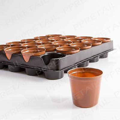 20 x SMALL PLANT POTS + Carry Tray Seedling Plant Seed Growing/Sowing Greenhouse