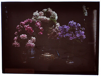 """Autochrome 9x12cm """"flowers in vases with a cinerary urn?"""" 1914 good condition A2"""