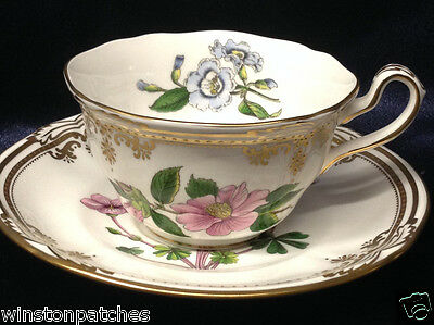 Spode England Bone China Stafford Flowers Cup & Saucer Gold Scrolls & Trim