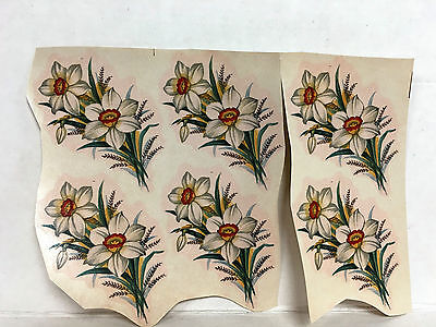 Ceramic decals narcissus floral pattern lot of 48