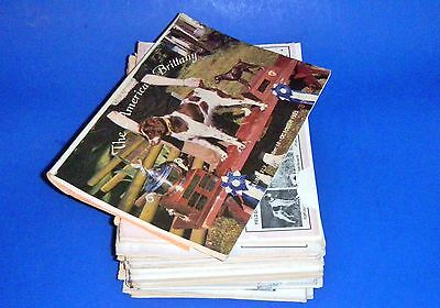 "Stack of ""AMERICAN BRITTANY"" Magazines fm the early 1990's"