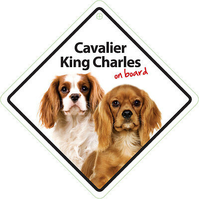 Cavalier King Charles on board - Autoschild - Magnet & Steel