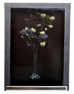 """Autochrome 9x12cm """"flowers in vase"""" 1910/1915 good condition A16"""