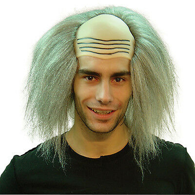 Grey Mad Professor Wig Scientist Halloween Adult Fancy Dress Accessory