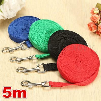 5 Metre Nylon Pet Puppy Dog Lead Leash Long Line Walking Training Rope Strap
