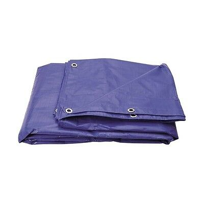 Tarpaulin 2.7M X 3.5M (9X12 ft) Blue Sheet Polyethelene Ground Sheet Rain Cover