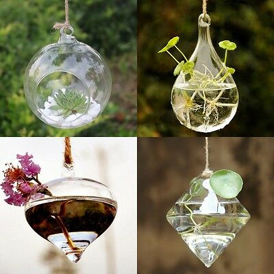 Diy Hydroponic Plant Flower Hanging Glass Vase Container Home Garden