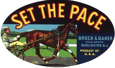 Crate Label Scarce Vintage Horse Horseracing New Jersey 1940S Original Harness