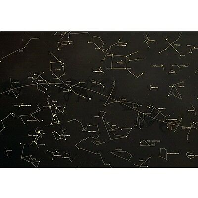 Star Map Glow in the Darkness Night Sky Constellations Zodiac Chart Poster Decal