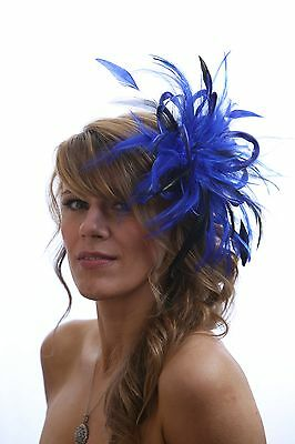 Royal Blue with Black Fascinator Hat choose any colour satin/feathers